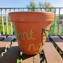 Plant King Plant Pot
