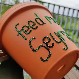Feed Me Seymour Plant Pot