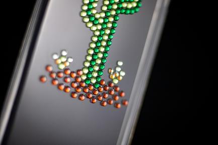 Cactus Phone Case
